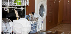 NJ Dishwasher repair experts Anytime Service